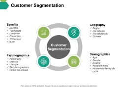 Customer Segmentation Ppt PowerPoint Presentation Inspiration