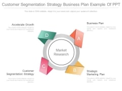 Customer Segmentation Strategy Business Plan Ppt Example