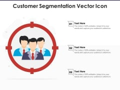 Customer Segmentation Vector Icon Ppt PowerPoint Presentation Gallery Deck PDF