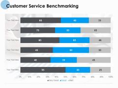 Customer Service Benchmarking Ppt PowerPoint Presentation Portfolio Portrait