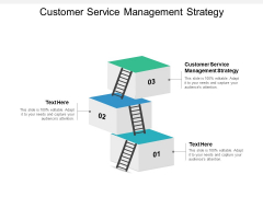 Customer Service Management Strategy Ppt PowerPoint Presentation Icon Aids Cpb