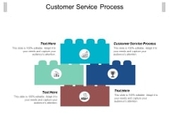 Customer Service Process Ppt Powerpoint Presentation Styles Guide Cpb