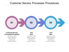Customer Service Processes Procedures Ppt PowerPoint Presentation Ideas Example Cpb