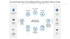 Customer Service Reporting System Structure Ppt Professional Visual Aids PDF