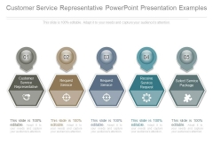 Customer Service Representative Powerpoint Presentation Examples