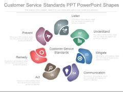 Customer Service Standards Ppt Powerpoint Shapes