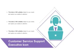Customer Service Support Executive Icon Ppt PowerPoint Presentation Infographic Template Graphic Tips PDF