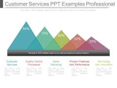 Customer Services Ppt Examples Professional
