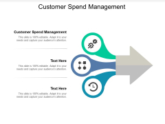 Customer Spend Management Ppt PowerPoint Presentation Pictures Designs