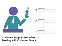 Customer Support Executive Dealing With Customer Query Ppt PowerPoint Presentation Ideas Visual Aids PDF