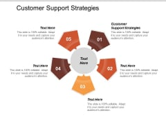 Customer Support Strategies Ppt PowerPoint Presentation Layouts Layouts Cpb
