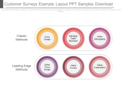 Customer Surveys Example Layout Ppt Samples Download