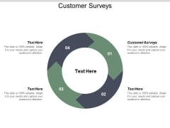 Customer Surveys Ppt PowerPoint Presentation Inspiration Icon Cpb