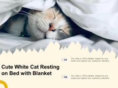 Cute White Cat Resting On Bed With Blanket Ppt PowerPoint Presentation Icon Infographic Template PDF