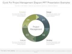 Cycle For Project Management Diagram Ppt Presentation Examples