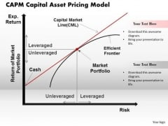 Capm Capital Asset Pricing Model Business PowerPoint Presentation