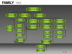 Company Organization Hierarchy Diagram PowerPoint Templates