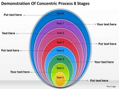 Concentric Process 8 Stages Business Plan PowerPoint Slides