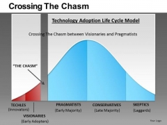 Crossing The Chasm Ppt 2