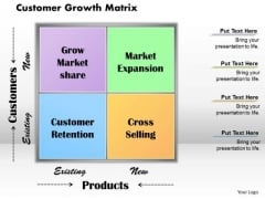 Customer Growth Matrix Business PowerPoint Presentation