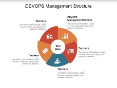 DEVOPS Management Structure Ppt PowerPoint Presentation Gallery Skills Cpb