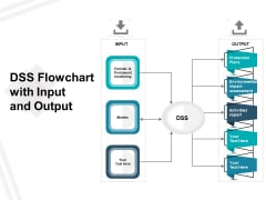 DSS Flowchart With Input And Output Ppt PowerPoint Presentation Gallery Slides PDF