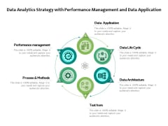 Data Analytics Strategy With Performance Management And Data Application Ppt PowerPoint Presentation Summary Images PDF