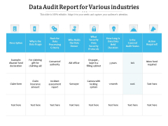Data Audit Report For Various Industries Ppt PowerPoint Presentation Show Background Designs PDF