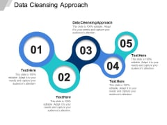 Data Cleansing Approach Ppt PowerPoint Presentation Icon Ideas Cpb