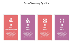 Data Cleansing Quality Ppt PowerPoint Presentation Icon Graphics Design Cpb