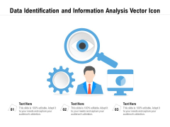 Data Identification And Information Analysis Vector Icon Ppt PowerPoint Presentation Gallery Example PDF