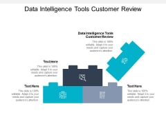 Data Intelligence Tools Customer Review Ppt PowerPoint Presentation Ideas Background Cpb