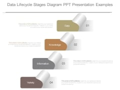 Data Lifecycle Stages Diagram Ppt Presentation Examples