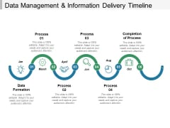 Data Management And Information Delivery Timeline Ppt PowerPoint Presentation Inspiration Example File