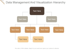 Data Management And Visualization Hierarchy Ppt PowerPoint Presentation Inspiration