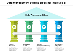 Data Management Building Blocks For Improved BI Ppt PowerPoint Presentation Gallery Design Templates PDF