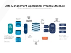 Data Management Operational Process Structure Ppt PowerPoint Presentation File Graphics Pictures PDF