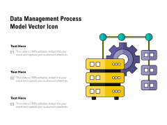 Data Management Process Model Vector Icon Ppt PowerPoint Presentation Gallery Example PDF