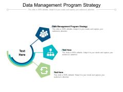 Data Management Program Strategy Ppt PowerPoint Presentation Inspiration Show Cpb Pdf
