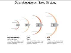 Data Management Sales Strategy Ppt PowerPoint Presentation Summary Show Cpb