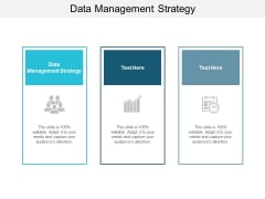 Data Management Strategy Ppt PowerPoint Presentation Ideas Graphics Template Cpb