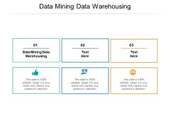 Data Mining Data Warehousing Ppt PowerPoint Presentation Layouts Example File Cpb Pdf