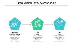 Data Mining Data Warehousing Ppt PowerPoint Presentation Portfolio Show Cpb Pdf