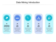 Data Mining Introduction Ppt PowerPoint Presentation Infographic Template Show Cpb