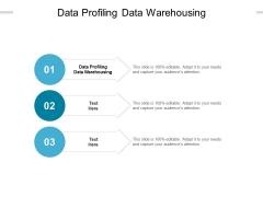 Data Profiling Data Warehousing Ppt PowerPoint Presentation Slides Visuals Cpb Pdf
