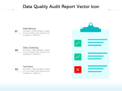 Data Quality Audit Report Vector Icon Ppt PowerPoint Presentation Layouts Example Topics PDF