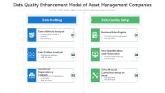 Data Quality Enhancement Model Of Asset Management Companies Ppt PowerPoint Presentation Professional Information PDF