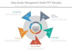Data Quality Management Model Ppt Samples