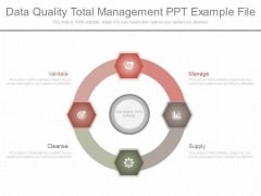 Data Quality Total Management Ppt Example File