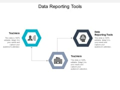 Data Reporting Tools Ppt PowerPoint Presentation Styles Diagrams Cpb